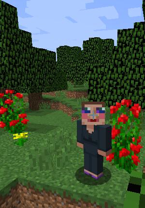 Me enjoying a wander around my Minecraft world...